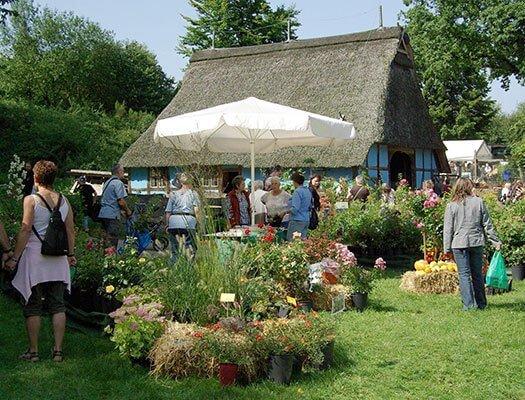 Plantemarked i Kiekeberg