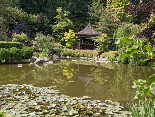 Sø i Birkegårdens Haver