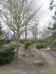 Haven hos Helga og Hans Hansen