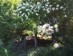 Drivhus på badebro i Eges Have