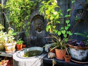 Neptunfontæne i Eges Have