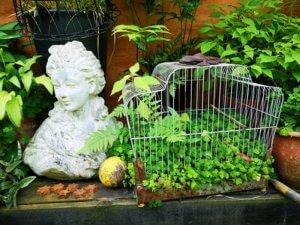 Opstilling i Eges Have