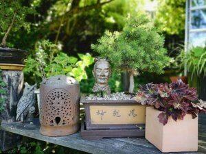 En bid af Japan i Eges Have