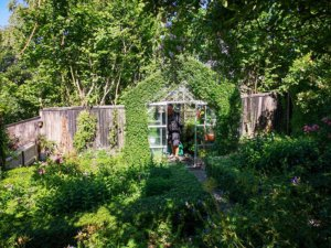 Drivhus med ligusterkant i Eges have