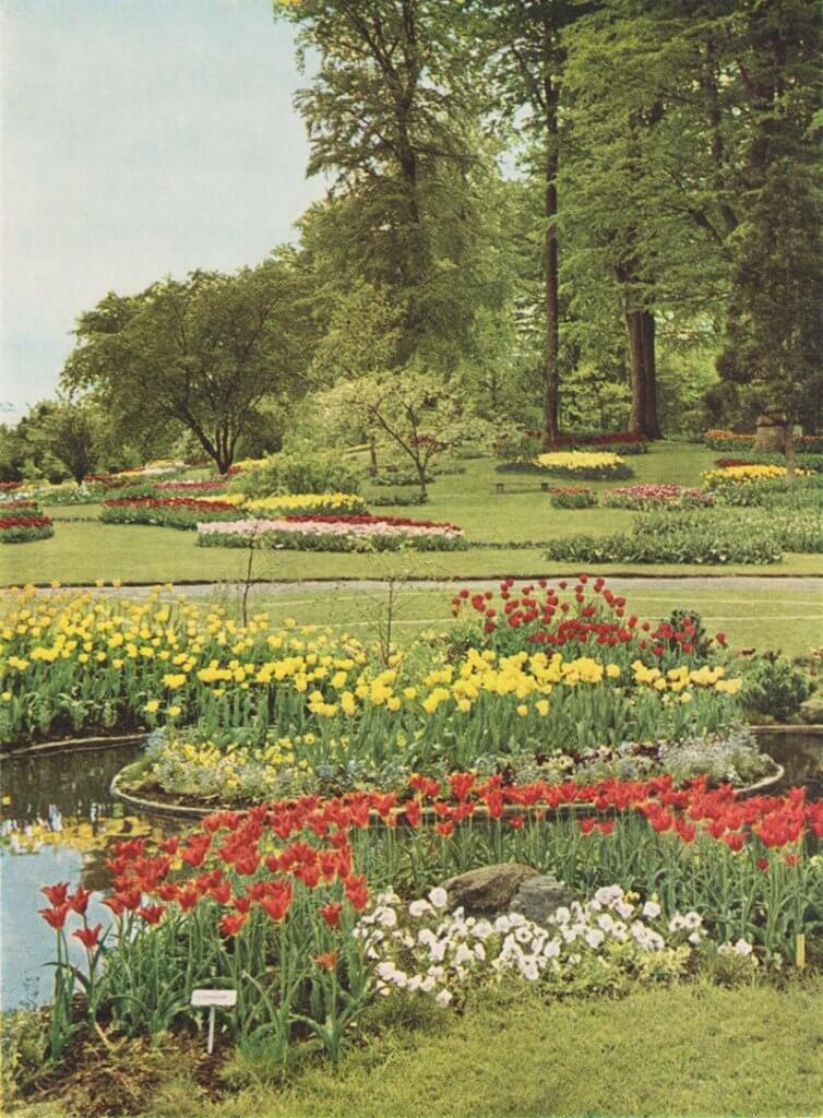 Langesø Blomsterløgpark
