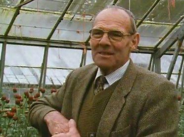 Chefgartner Harry Dodson